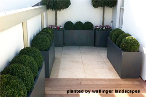 garden planters in london with Evergreenpotsandsoil on Roof Terrace Design Kings Cross St Pancras additionally Rattan Garden Furniture Sofa Set Santa Maria Brown likewise New Front Garden Car Parking Space further Tropical Garden furthermore Battersea.